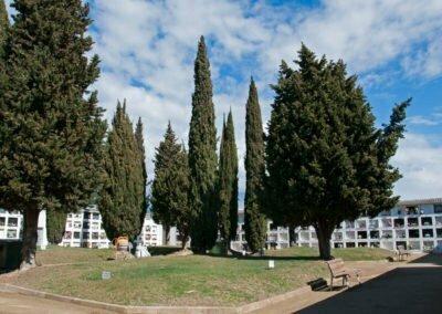 Cementiri interior
